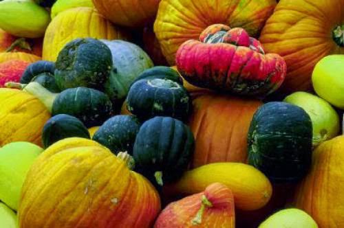 Pagan Events Over Halloween Samhain And Next Week