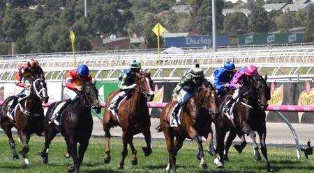 race 4_finish 2