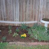 Gardening 2014 - 116_1121.JPG