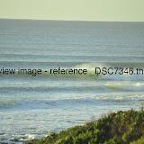 _DSC7346.thumb.jpg