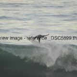 _DSC5899.thumb.jpg