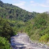 Rio Guayllabamba, 900 m. Chontal (Imbabura, Équateur), 11 décembre 2013. Photo : J.-M. Gayman