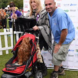 OIC - ENTSIMAGES.COM - Michelle Collins and TV Vet Mark Abraham at the  PupAid Puppy Farm Awareness Day 2015 London 5th September 2015 Photo Mobis Photos/OIC 0203 174 1069