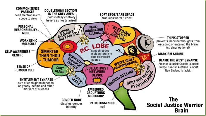sjw brain