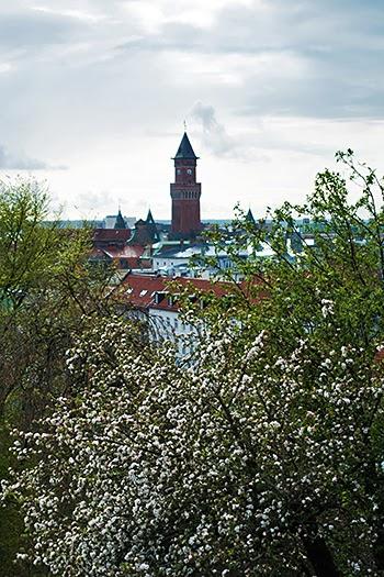Helsingborg16.jpg