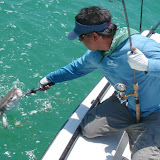 Fishing the Gulf 012.jpg