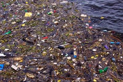 ¿Por qué se contamina el agua?