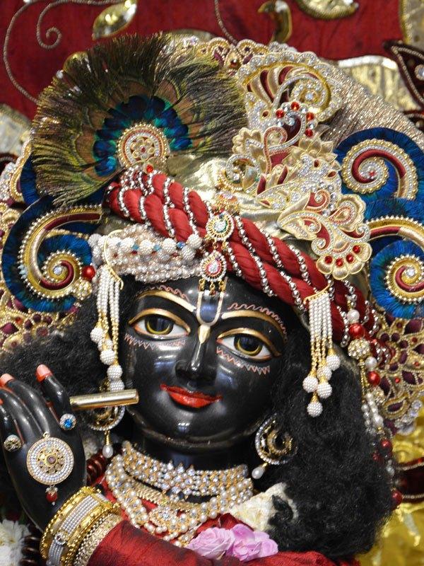 ISKCON Ahmedabad Deity Darshan 30 Mar 2016  (8)