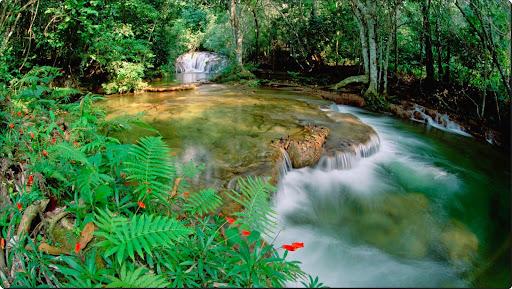 Mato Grosso, Betione, Serra de Bodoquena, Brazil.jpg