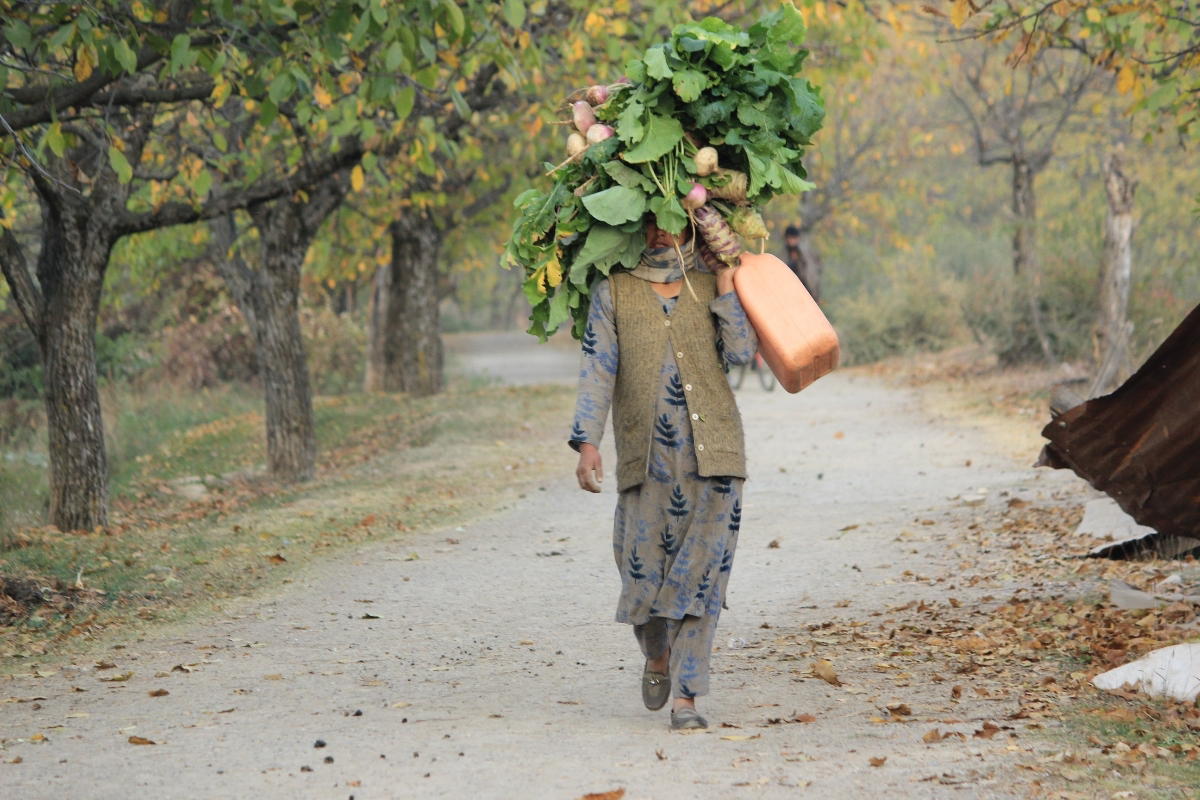 A lady carrying Collard greens (Haakh) and turnip on her head in South Kashmir's pulwama