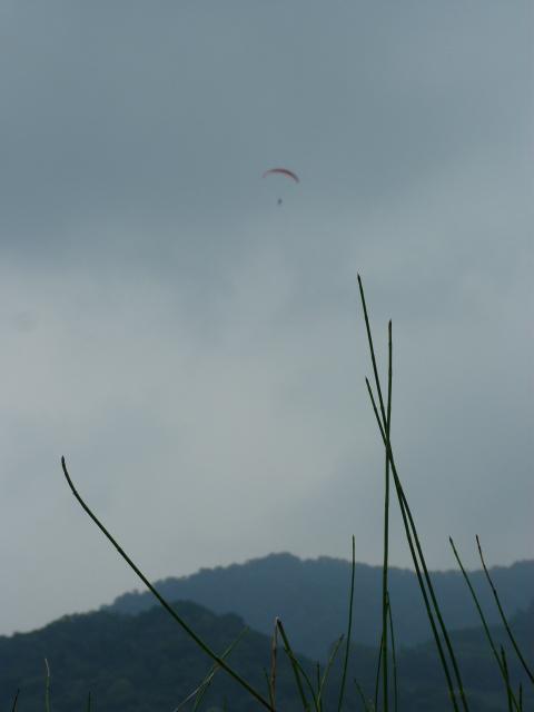 TAIWAN.Hsinchu et une minuscule partie du parc national de Sheipa, l empire du brouillard... - P1070736.JPG