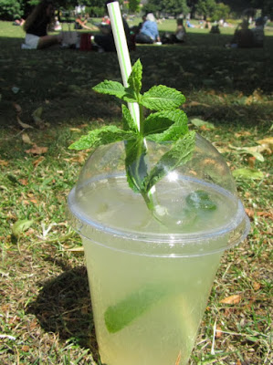 lemonade with fresh mint
