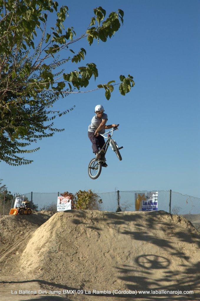 Ballena Dirt Jump BMX 2009 - BMX_09_0040.jpg