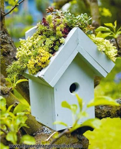 Trang hoàng nhà cửa với 20 ngôi vườn tí hon đem lộc cho gia chủ - Thi công trang trí nội thất-3