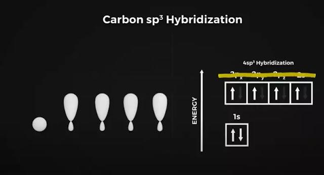carbon sp3 hybridization