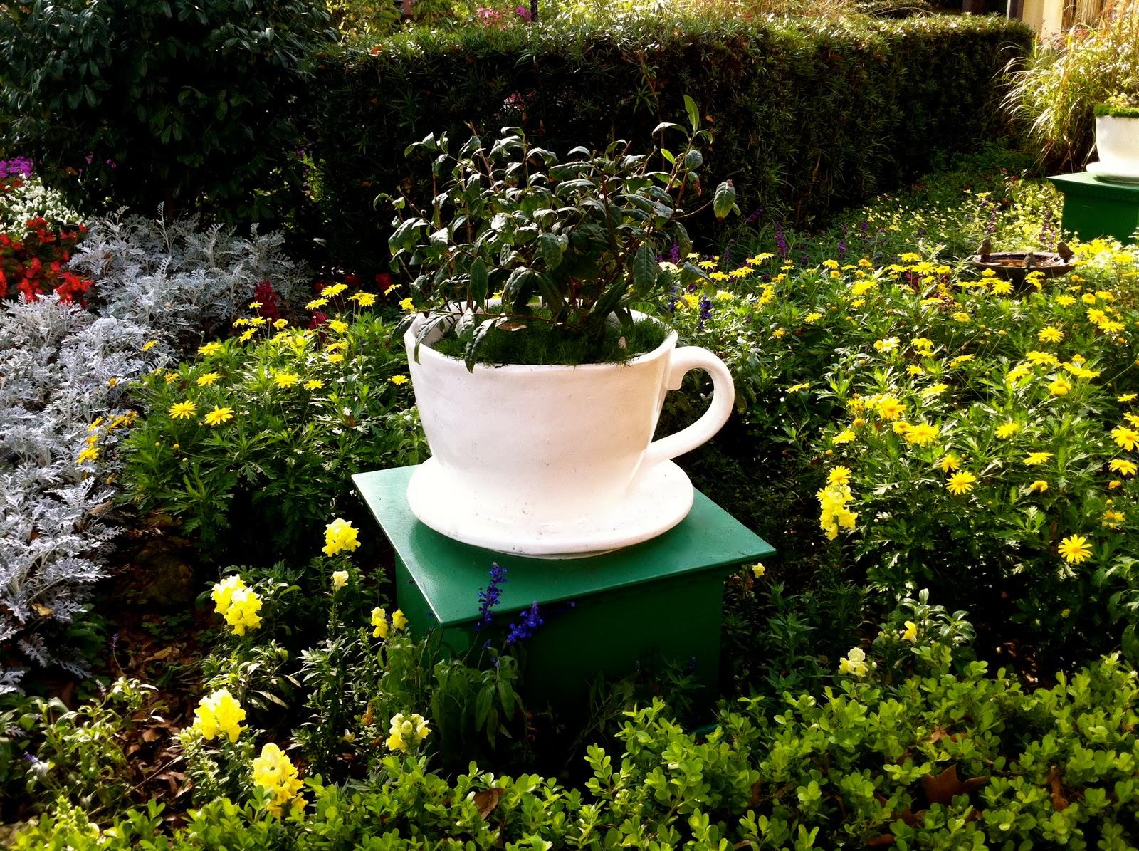 Lou Girl Plus Tea: English Tea Garden / My Dream Garden on My Dream Patio id=83413