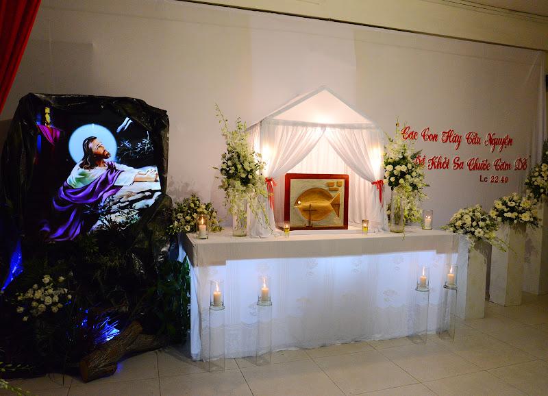 Ảnh-Suy tôn - Lễ tiệc ly - Cầu nguyện bên Thánh Thể