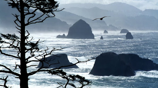 Ecola Point, Oregon Coast.jpg