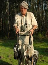 magpie_geese_hunting_4L.jpg