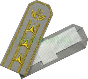 Погони ДЛО Директор /тк. сіра (2пр. 3 з-ки)