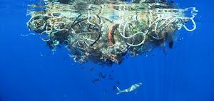 Hành trình rác thải đại dương trong 35 năm