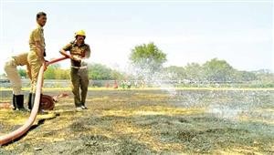 Fire in Vellore Castle Park - several acres of lawn burned down