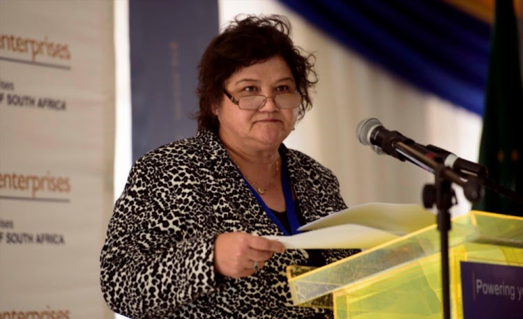 The Minister of Public Enterprises Lynne Brown. File photo.