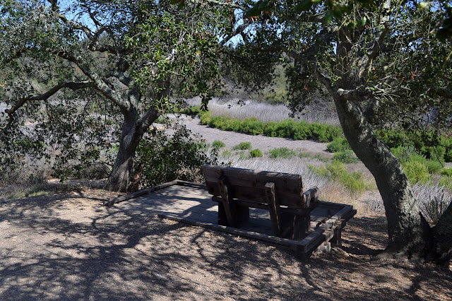 bench beside a long dry pond