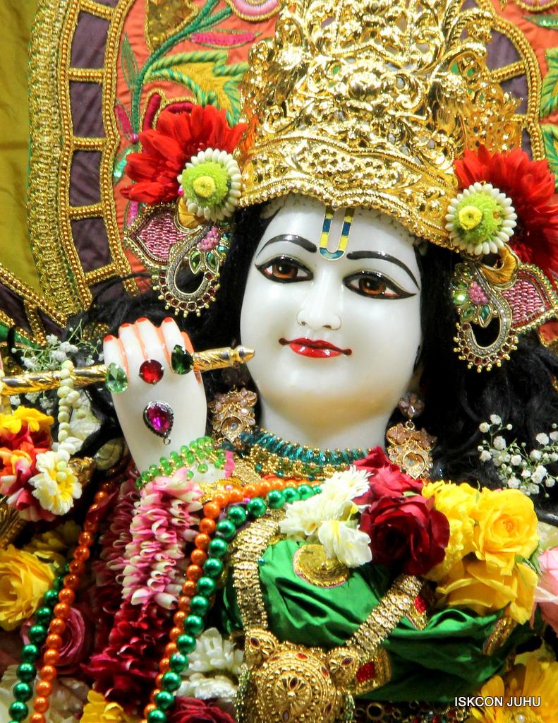ISKCON Juhu Sringar Deity Darshan on 18th Jan 2017 (23)