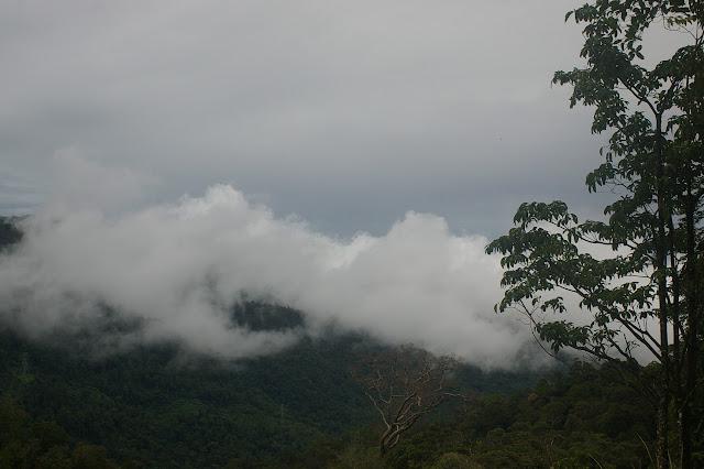 Crocker Range au nord-ouest de Tambunan (Sabah, Malaisie, Bornéo), 18 août 2011. Photo : J.-M. Gayman