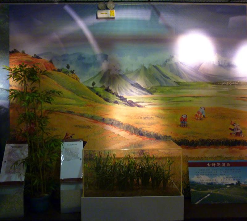 Hualien County. De Liyu lake à Fong lin J 1 - P1230811.JPG