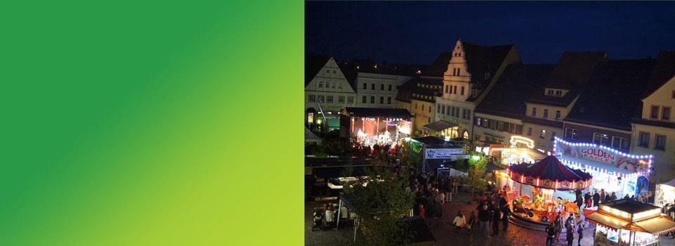 Birkenfest 2013