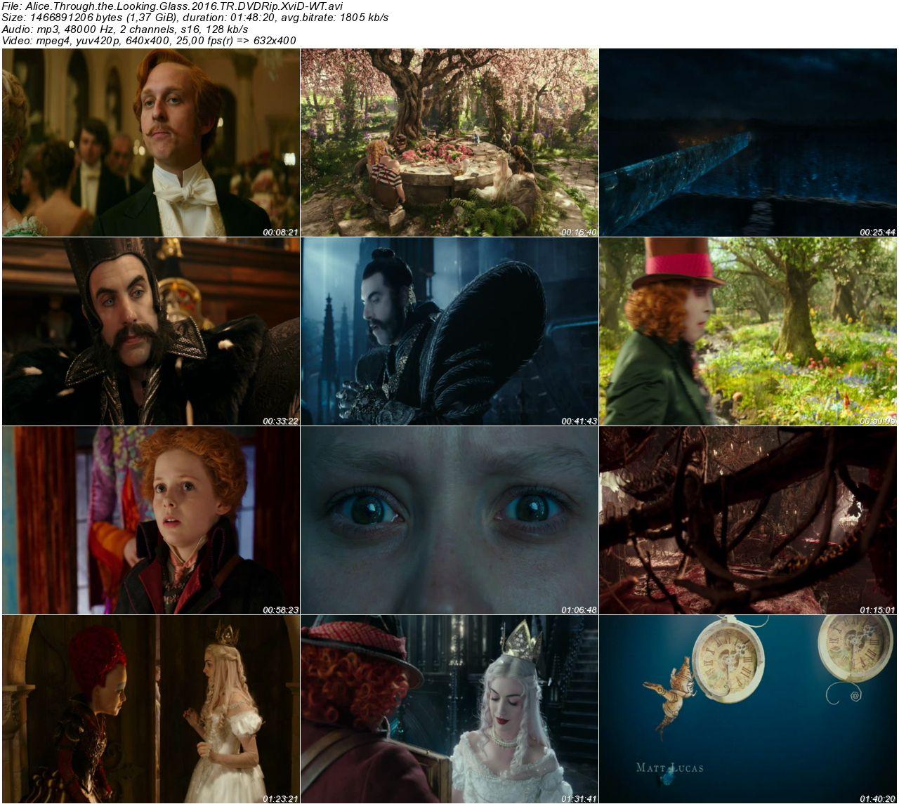 Alis Harikalar Diyarında Aynanın İçinden - 2016 480p DVDRip x264 - Türkçe Dublaj Tek Link indir