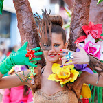 CarnavaldeNavalmoral2015_269.jpg