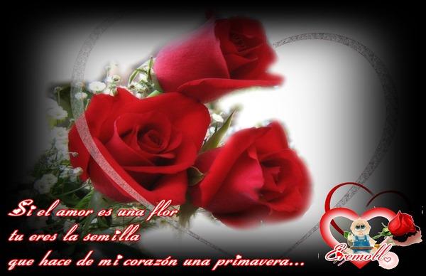 El amor es una flor eremoll...