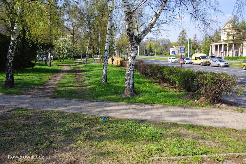 Droga dla rowerów ominie brzozy