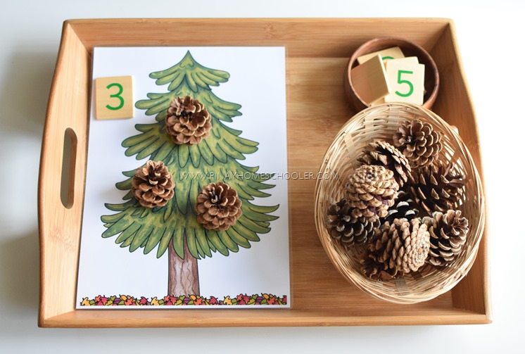 Autumn Themed Activity: Pinecone Counting