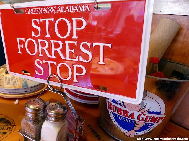 stop-forrest-stop.JPG