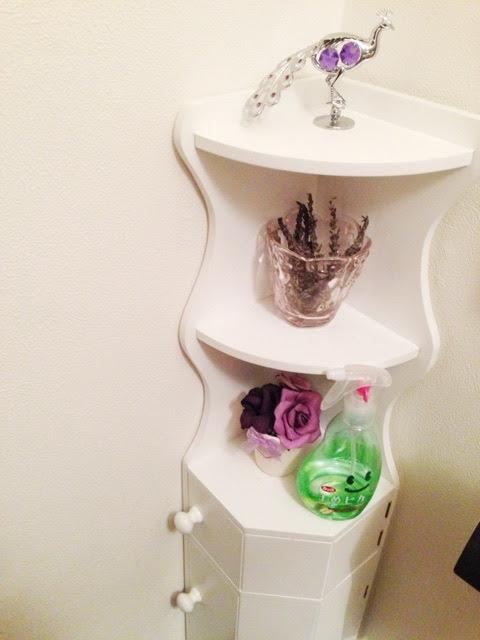 interior-toilet19.jpg