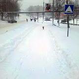 Дорога на улицу Тульскую уже почистили. Это пока я с собакой обошел Дворец культуры. Оперативно.