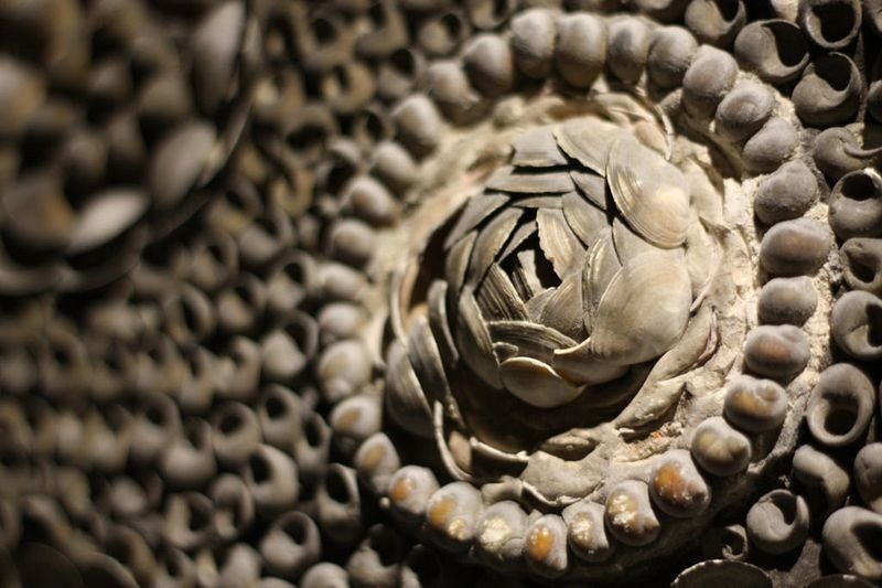 shell-grotto-margate-6