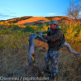 A bowhunter tries to convince bull elk to join him on an early October morning in Montana's Castle Mountains.