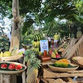 phuket event Hanuman World Phuket A New World of Adventure 009.JPG