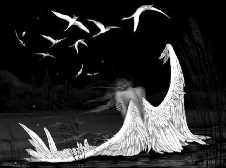 Angel And Swans, Angels 2