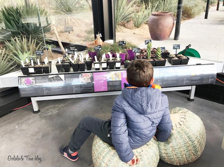 Desert city con niños