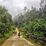 Weda, Halmahera, Maluku (Indonésie), 28 août 2014. Photo : T. Boucher