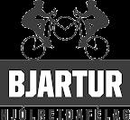 Merki Bjarts