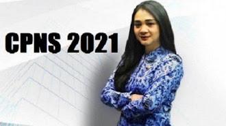 Seleksi CPNS 2021 Batal Dibuka 31 Mei