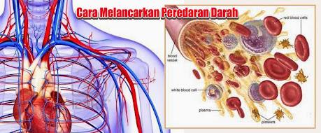 Pengobatan Gangguan Peredaran Darah