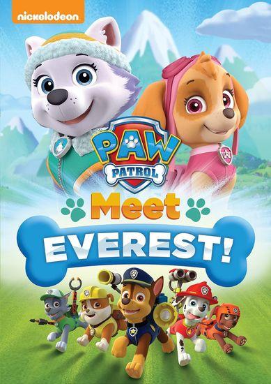 Paw Patrol Meet Everest! – Latino